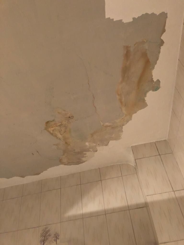 albañil-arreglar-techo